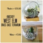 Knockoff West Elm Brass Base Terrarium