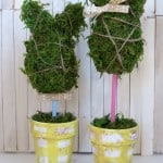 These moss bunny topiaries are SO CUTE for Easter and spring!