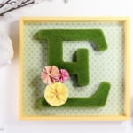 DIY Moss Monogram Shadow Box