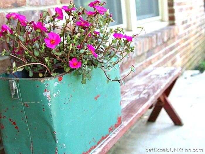 Fun-Junky-Finds-Make-Great-Flower-Planters-Petticoat-Junktion_thumb