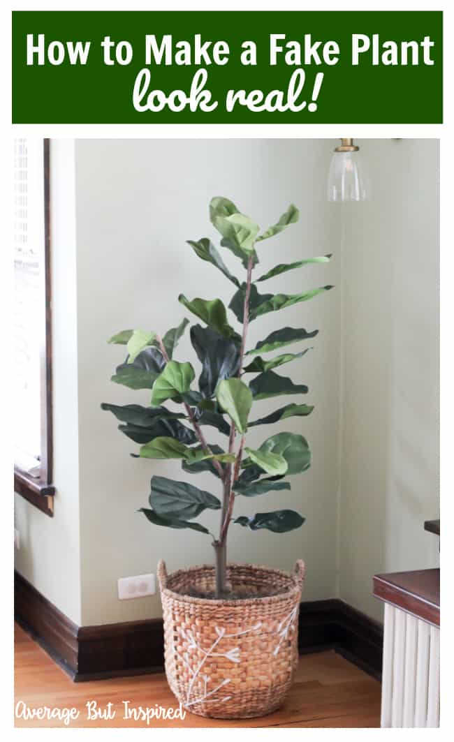 This is great! It's actually super easy to make any fake plant look real with these tips! See how this blogger made her fake fiddle leaf fig tree look real with dollar store supplies.
